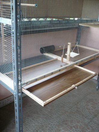 Costruire una voliera per le nostre cocorite for Voliera fai da te