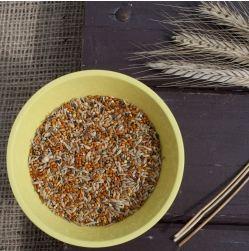 Semi e cereali nella dieta dei pappagallini - Vitamine per cocorite ...